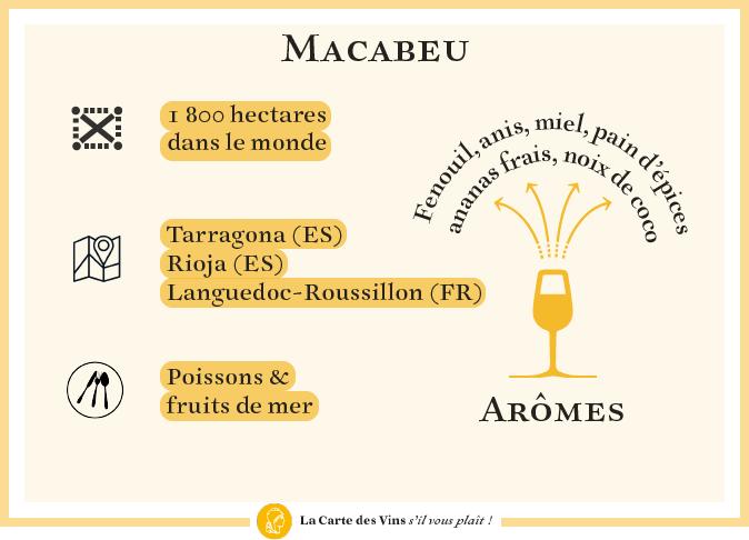 cepage-macabeu