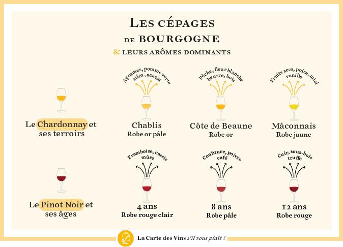 cépages-aromes-bourgogne