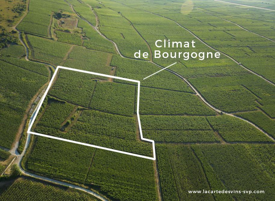 climat vin bourgogne