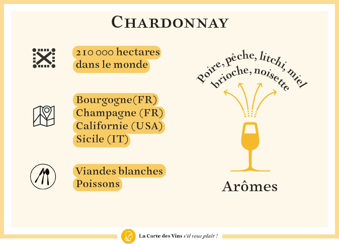 cepage-chardonnay