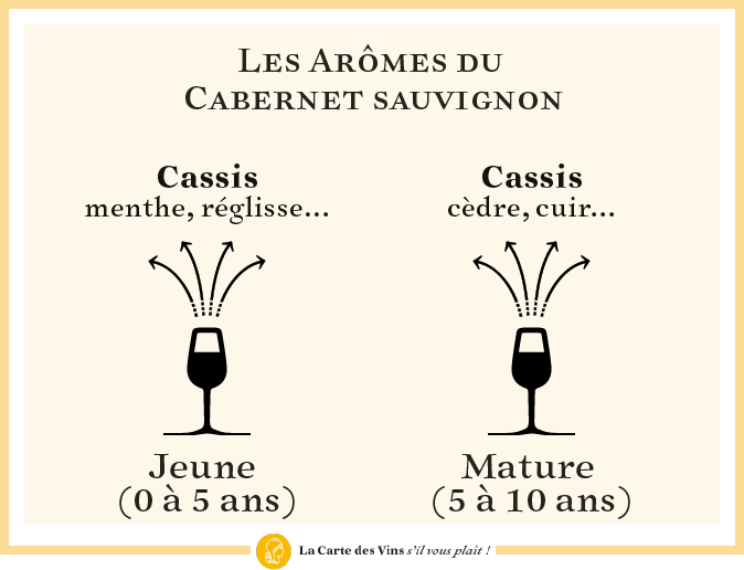 aromes-cabernet-sauvignon