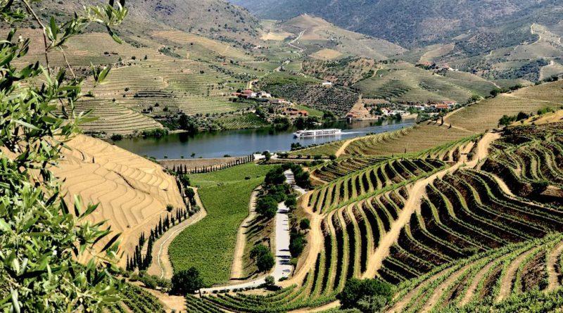 vins-du-portugal