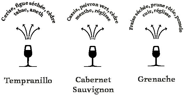 arômes-cépages-espagne